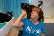 Advantis employee volunteering at the Humane Society, petting cat.